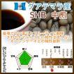コーヒー豆 グアテマラ コーヒー SHB 中煎 最高級グレード 500g グァテマラ 珈琲 50杯分 珈琲豆