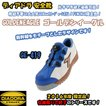 安全靴 ディアドラ DIADORA ゴールデンイーグル GOLDENEAGLE GE419 フィンチ限定色 新幹線をモチーフ