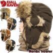 Fjall Raven フェールラーベン Nordic heater ノルディックヒーター