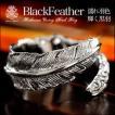 リング メンズリング 指輪 ブラスアクセサリー フェザーリング 羽 真鍮 フリーサイズ ブラック bssri0024