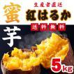 紅はるか【送料無料】熊本県大津産5kg【蔵出しBenimo】