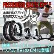【完売】スケートサイクル フリーライダー 日本正規品 未来的スケート 送料無料