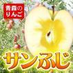 りんご 青森 サンふじ 家庭用 3C箱(10個入) ◆成田 | 林檎 訳あり 青森県産 送料無料