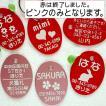 アルミ製の迷子札・だ円・可愛いイラストいろいろ (メール便なら→)【送料無料】