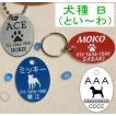 犬の迷子札・だ円イラスト・犬B (メール便なら→)【送料無料】