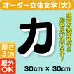 厚さ3cmカルプ文字(大)/タテ30cm×ヨコ30cm以内  立体文字  箱文字  店舗用看板  オーダー看板  オリジナル看板