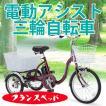 電動三輪自転車 激安 電動アシスト三輪自転車 電動三輪車 大人用 三輪車 三輪自転車 フランスベッド ASU-3W01  高齢 者 用 自転車