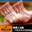 業務用 焼肉 生姜焼き 切り落とし 栃木県産 那須三元豚 バラスライス500g 食品 肉 お試し 卸 問屋 直送 カルビ 2点以上は送料がお得です