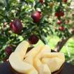 りんご(秋映) 3kg 「ふくしまプライド。体感キャンペーン(果物/野菜) 」