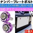 ナンバープレートボルト ネジ カラーワッシャー 紫2個 ビス M6 P1.0 フロント部の雰囲気が変わる as1757