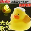 送料無料 光って歌うよ 温泉あひる黄HB-2263 お風呂のおもちゃ 楽しいお風呂のおもちゃ アヒル カワイイお風呂のおもちゃ アヒル Ha002