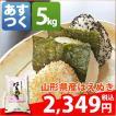 米 お米 5kg 山形県 1等米 白米 はえぬき 5kg  平成28年産 送料無料 北海道・沖縄・一部地域を除く