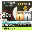 LED電球 E26 60W形 26口金  810lm led  【ポイント10倍】