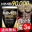 HMB サプリメント バルクヒーロー/3袋セット 高品質HMB90000mg トレーニング 360粒 国内製造 90日分 Mr.GINO