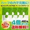 【4個セット】センシンレンサプリメント センシニティカプセル ベーシックグリーン