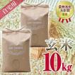 自宅用玄米(5kg×2) コシヒカリ 農林水産大臣賞受賞  / 玄米 お米 ご飯 10kg