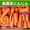 【送料無料】無農薬ジュース用洗い人参10kg