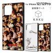 iPhone 12/12 Pro 2020秋 6.1inch グレムリン 耐衝撃ハイブリッドケース KAKU かわいい お洒落 SF TPU アクリルパネル イングレム IQ-WP27K3TB-GR
