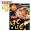 札幌スープカレー ばぐばぐ チキンときのこのスープカレー 1食入り レトルトカレー ギフト お土産 北海道 お取り寄せ