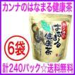 即納 OFFクーポン配布中「はなまる健康茶」カンナのはなまる健康茶(6袋)240パック入り 通販<送料無料&代引き無料>