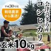 農家直送 会津喜多方産コシヒカリ玄米10kg 平成30年度産