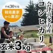 農家直送 会津喜多方産コシヒカリ玄米3kg 平成30年度産