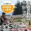 農家直送 会津喜多方産コシヒカリ玄米5kg 平成30年度産