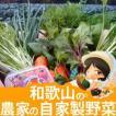 15点以上!農家の自家用野菜詰め合わせセット【野菜セット】【和歌山県産】