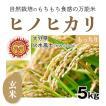 【玄米5kg】自然栽培のヒノヒカリ 大分県「火水風土」・玄米
