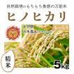 【精米5kg】自然栽培のヒノヒカリ 大分県「火水風土」・お米