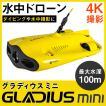 CHASING 水中ドローン GLADIUS MINI グラディウス ミニ 100m 水中カメラ 海中カメラ 動画 撮影 潜水