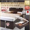 ベッド セミシングル ベッド 跳ね上げ 薄型スタンダードボンネルコイル 縦開き 深さグランド組立設置付