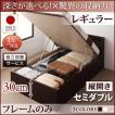 ベッドフレームのみ セミダブルベッド 跳ね上げ ベッド 収納 深さレギュラー 組立設置付 縦開き