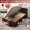 ベッド セミシングル 跳ね上げ ベッド 収納 薄型スタンダードボンネルコイル 横開き 深さレギュラー 組立設置付