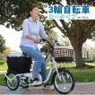 大人用三輪車 三輪自転車 ミムゴ スイングチャーリー ロータイプ MG-TRE16SW-WH 高齢者 シニア