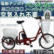 電動アシスト 三輪自転車 人気 シニア ノーパンク パンクしない電動自転車 ミムゴ MG-TRM20EBNF