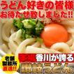 【ゆうメール出荷】鎌田醤油特製ダシ醤油6袋付き!!讃岐うどん6食分600g(300g×2袋)