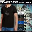 ビーチデイズ  Tシャツ 人気 ブランド メンズおしゃれ  アロハ  ハワイ 入学 就職 プレゼント 通販 夏 海 半袖  白 黒 ブルー チョコ S~XL BEACH DAYS BD-T02