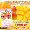 マンゴージュース 500ml 栄食品 マンゴー 濃縮還元果実ジュース フルーツジュース ギフト 奄美大島
