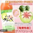 グアバジュース 栄食品 500ml フルーツジュース 濃縮還元グアバ グァバ 果実ジュース ジュース ギフト
