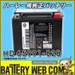 HD65991-82B HARLEY DAVIDSON HD ハーレー ダビットソン 純正 AGM 高性能 バイク バッテリー 6ヶ月保証 65991-82B 84-90ST/79-96XL