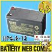 日本製 HP6.5-12 日立 新神戸 JIS規格 小型制御弁式鉛蓄電池 バッテリー UPS / 無停電電源 / 防災 搬送 防犯システム機器 / 非常 灯 / 太陽光 ソーラー 発電