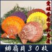 愛媛県南宇和島産「豪華活海の幸ギフト 緋扇貝30枚セット物語(扇貝30枚)」