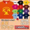 卓球 tabletennis Tシャツ ドライシルキー ウェア 練習着 チーム クラブ 全12色  T901 送料無料 5088
