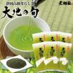 お茶 緑茶 静岡茶 カテキン 新茶 高級茶 大地の旬100g 6袋セット 送料無料