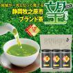 お茶 緑茶 茶葉 プレゼント ギフト 静岡茶 カテキン 牧之原ブランド茶 望金印100g 3本箱入 送料無料
