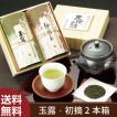 お茶 緑茶 茶葉 プレゼント ギフト 静岡茶 カテキン 送料無料 玉露・初摘箱入