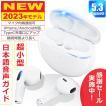 ワイヤレスイヤホン Bluetooth5.2 コンパクト FIPRIN 6909 日本語音声ガイド 高音質 重低音 防水 スポーツ iPhone Android ブルートゥース 最新型