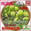 梅酒用青梅10 kg有機肥料使用/紀州和歌山県産