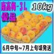 南高梅優品3L-10kg、梅干・梅酒・他、有機肥料使用/和歌山県産青梅(緑から黄色になる)